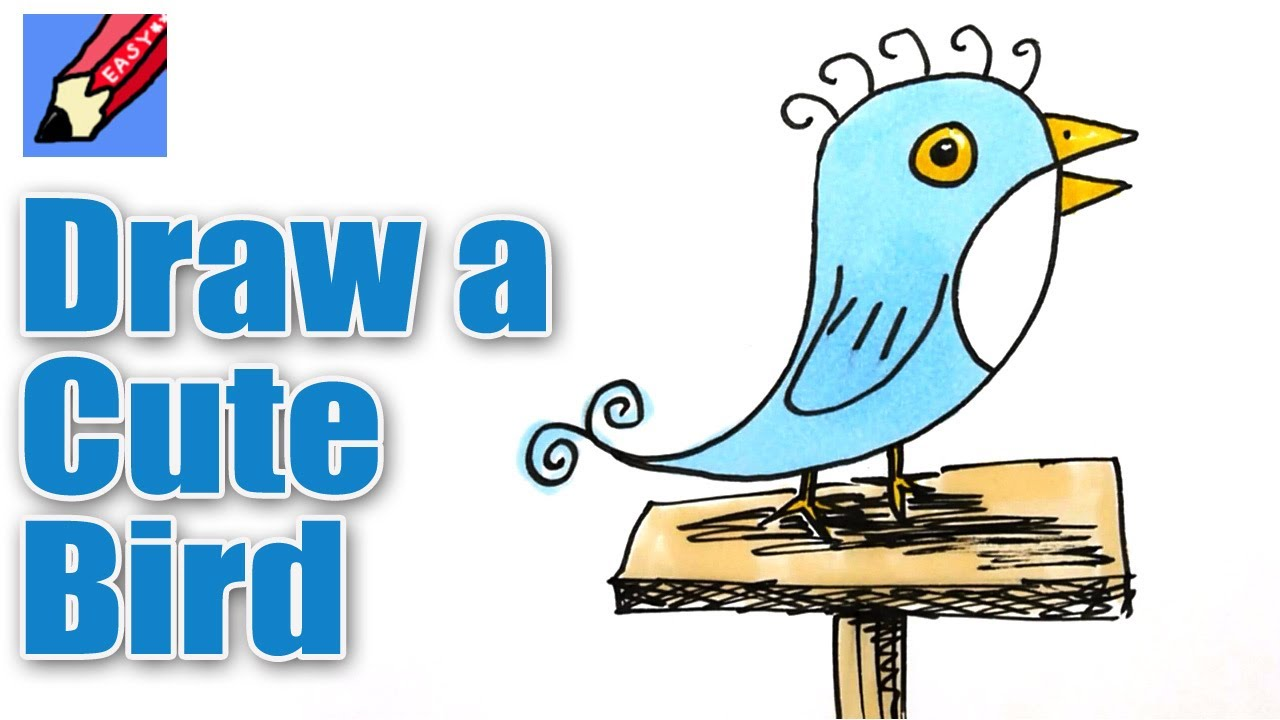 How To Draw A Cute Little Bird Real Easy