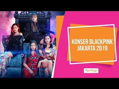 Sederet Selebriti Di Konser Blackpink Jakarta 2019