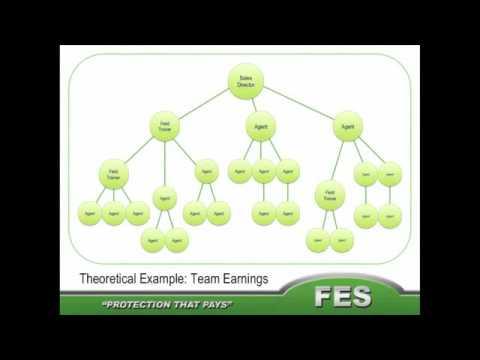 FES Compensation Plan 2017 Financial Education Services