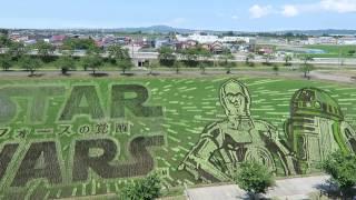 青森県田舎館村の田んぼアート第2会場です。 blogにて紹介しています。 ...