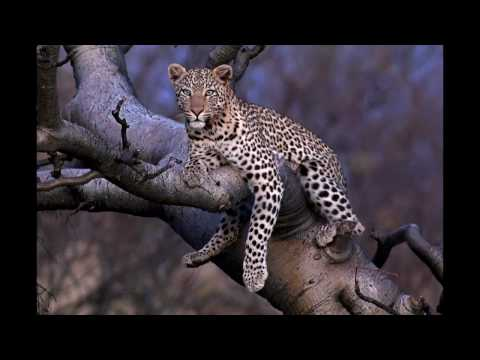 The making of my Namibia nature photography images