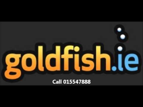 Dublin South FM's Business Eye interviews Gordon O'Neill of Goldfish.ie