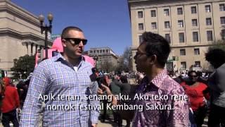 Kampung Amerika - Festival Sakura 2015