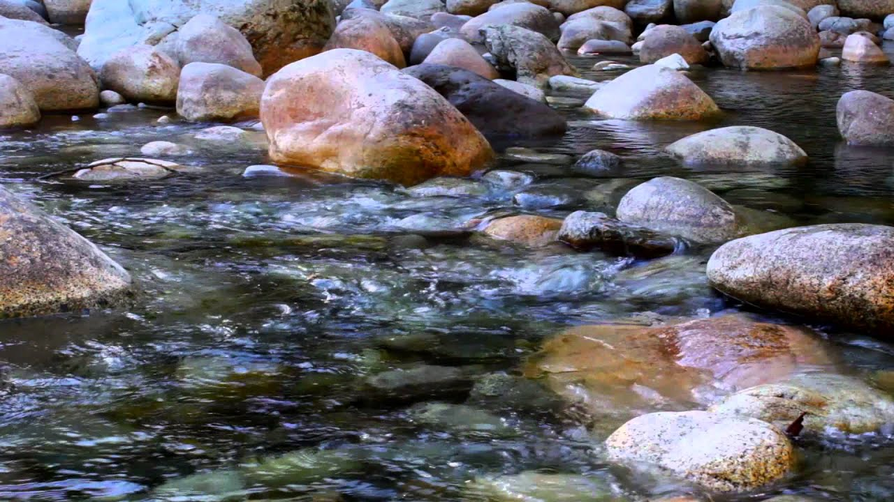 Free for use b roll footage river water running through for What to do with river rock
