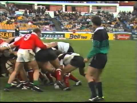 1993 Rugby Union match: North Harbour vs British and Irish Lions