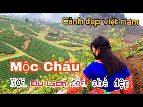 Du lịch mộc châu – Cùng người yêu đi chơi   Traver – Moc chau Tourism scenic Vietnam #NTV 2K Vlogs