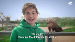 Ο ρόλος του Αττικού Ζωολογικού Πάρκου / The role of Attica Zoological Park