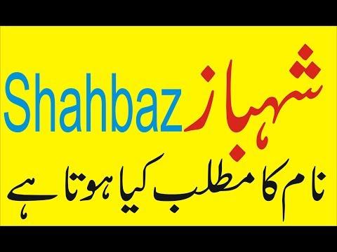 Shahbaz   name meaning Shahbaz   naam ka matlab kya hai