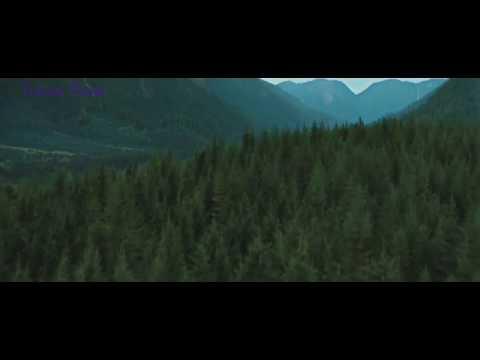 клип фильму сумерки 3