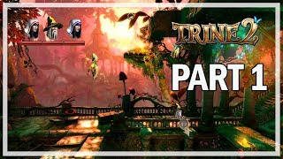 Trine 2 Co-op Let's Play Part 1 Puzzle Master - (PC Gameplay)