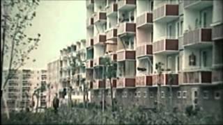 Dexter & Morlockk Dilemma - Weihnachten im Elfenbeinturm Snippet