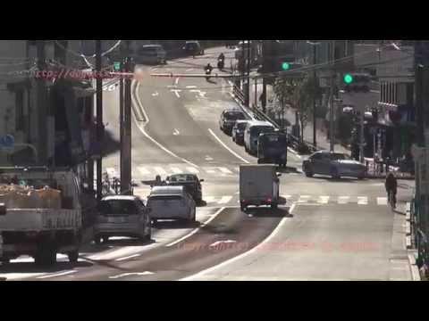 Japan Trip 2015 Tokyo Bunkyo-ku Cycling Shinobazu Avenue(Rt. 437)