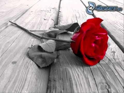 Es-Kvartet - Ruža.wmv