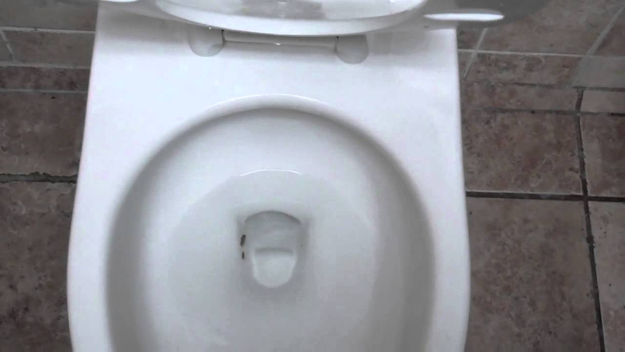 4042: Brand New 1.28 gpf American Standard Afwall Toilet 3 - YouTube
