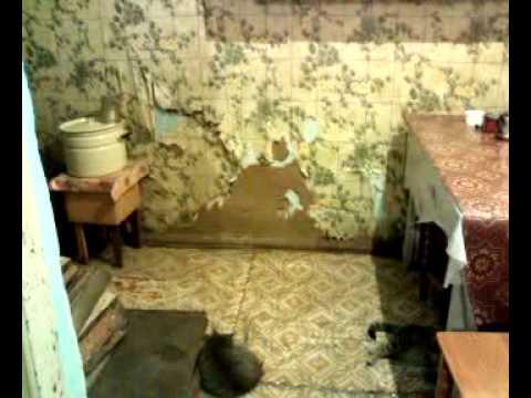 видео: Бедность и нищета в РФ