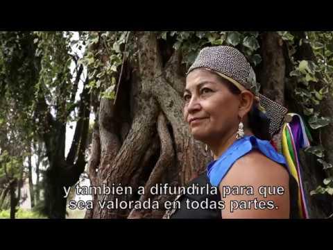 MAPUZUGUN - EL HABLA DE LA TIERRA. Año Internacional De Las Lenguas Indígenas