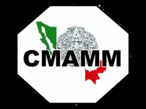 MMA Artes Marciales Mixtas Sinaloa