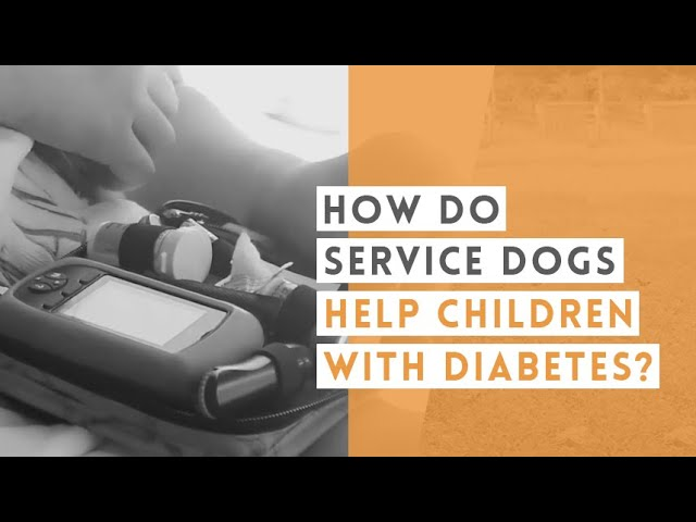 Helping Children with Diabetes   Video
