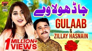 Ja Dhola Ve Main Nai Bulawraan | Gulaab, Zille Hassnain  | Latest Saraiki Song 2019