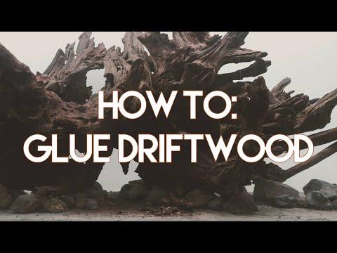 Minute Mentions: How To Glue Aquarium Driftwood