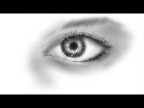 Draw the Human Eye