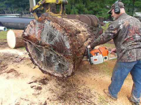 Ms880 big bore | Arboristsite com