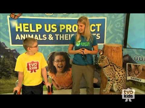 TVOKids Meets Sammy the Serval