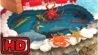 Kid -Kids -Learn Sea Animals Names For Children New Toy Videos For Kids Real Life Ocean Creatures S