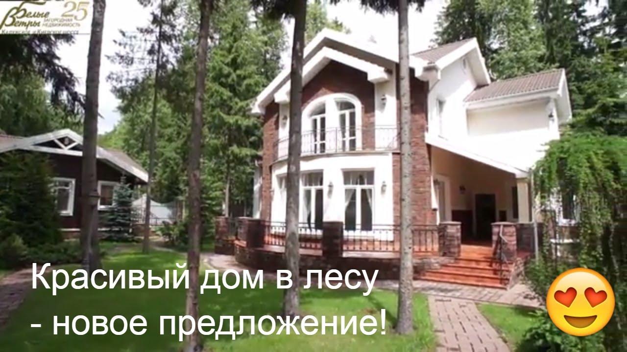 Деревянный дом в зимнем лесу - YouTube