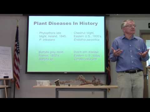 Master Gardeners Plant Pathology