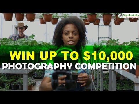 Top 10 Photography Contests For Professional And Amateur Photographers