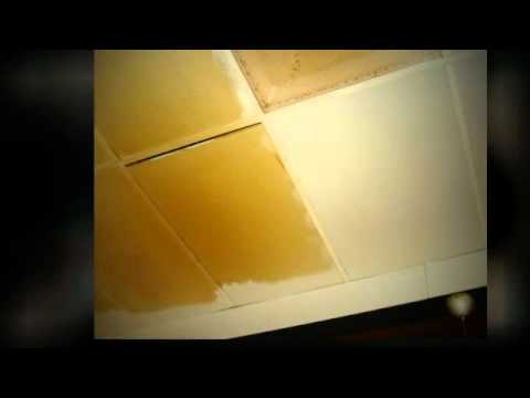 Surface Masters   Raleigh Ceiling Cleaning   919-415-1797