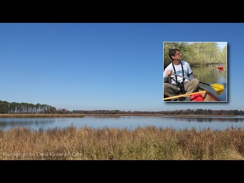 Cycling Blackwater Refuge to Hoopers Island