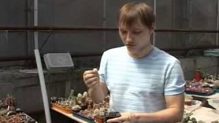 Ростовчанин собрал 900 видов кактусов