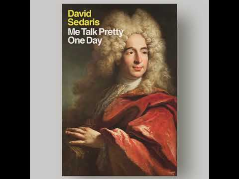 New Paperback Cover for ME TALK PRETTY ONE DAY