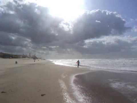 No weather for kites: Andrew's life in The Hague