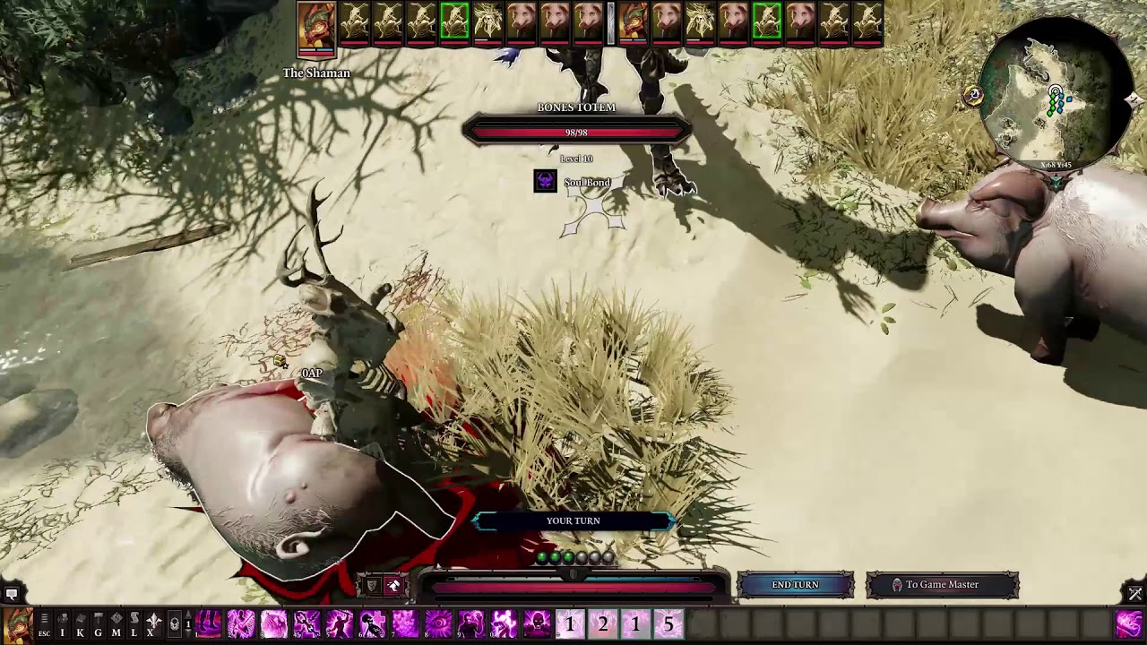 Divinity Original Sin 2 All Necromancer And Polymorph (Including Crafted)  Skills/Spells (Showcase)
