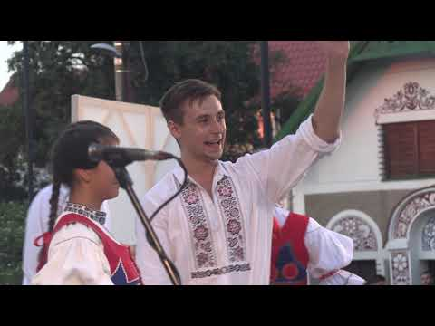Download MILOTICE-Národopisný festival kyjovského Dolňácka MILOTICE 2020 (2.)