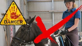 10 DON'TS with horses or horseriding