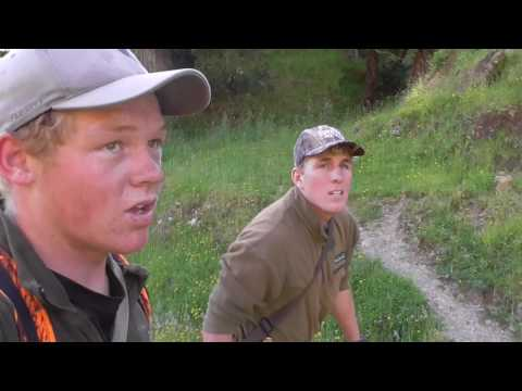 Red Deer Summer Meat Hunt NZ 2017