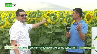Toprağa Organik Dokunuş- Ay Çiçeği, Fasulye, Şeker Pancarı, Buğday, Mısır Yetiştirme