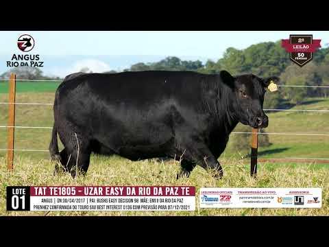LOTE 01  TAT TE 1805 UZAR EASY DA RIO DA PAZ TE - 07/08 14H PRO. AGENCIA E TV EL CAMPO