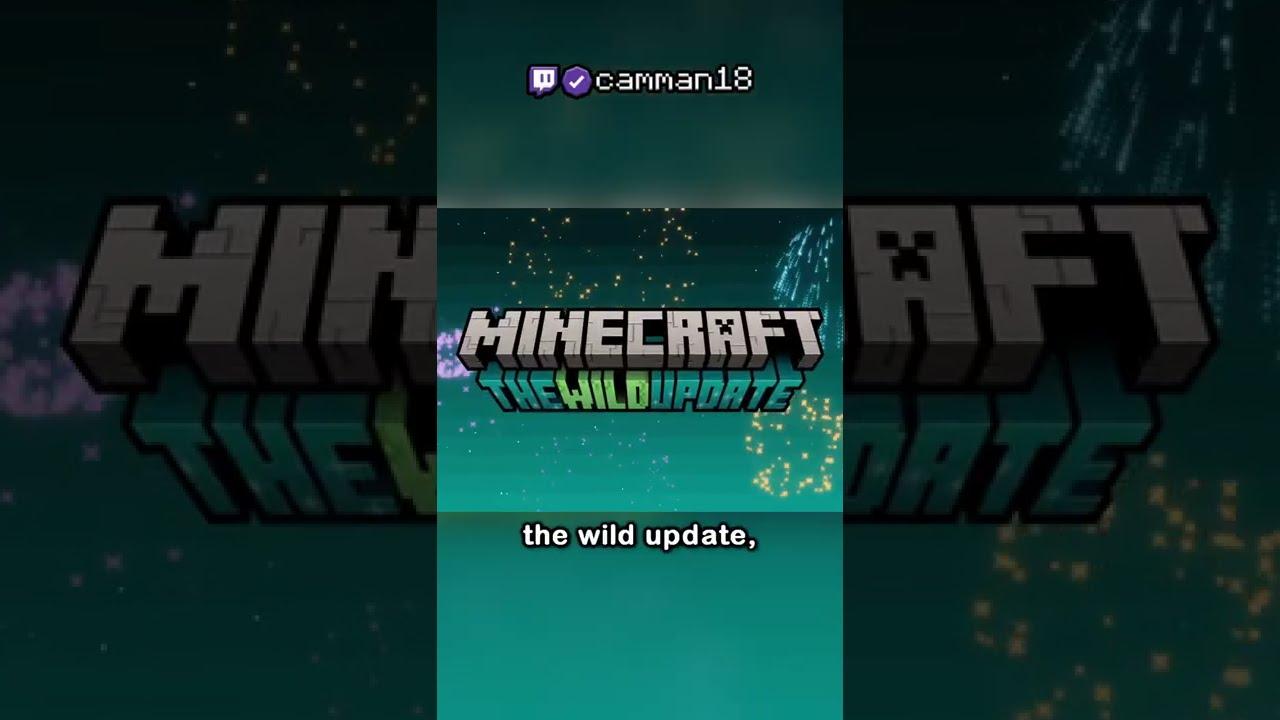 Download Minecraft 1.19: The Wild Update