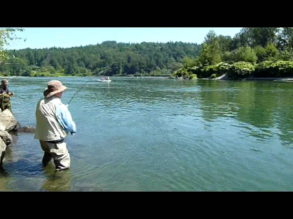 Fishing for pinks in the snohomish river youtube for Snoqualmie river fishing