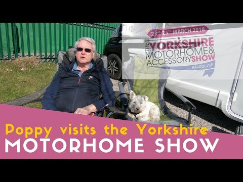 Poppy visits The Yorkshire Motorhome and Accessory Show