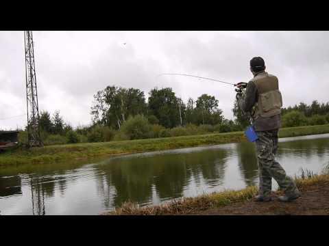 егорьевск платная рыбалка форель