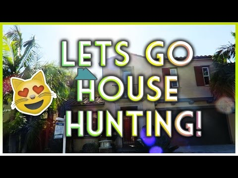 LET'S GO HOUSE HUNTING!