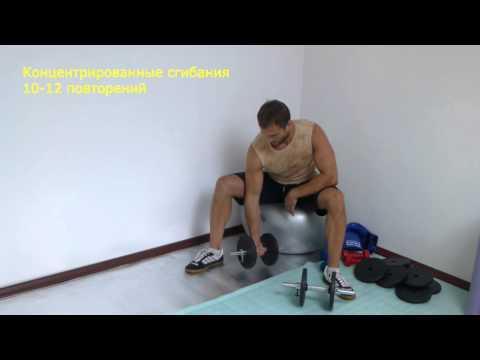 Комплексы упражнкний занятия гантельной гимнастикой