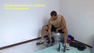 видео группа упражнений с гантелями