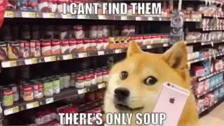 Doge goes to the soup store meme